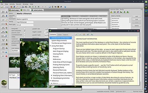 Screenshot Plant Base Linux