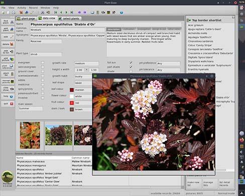 Plant Base 2.1.11 using MX Linux 19.2 Xfce