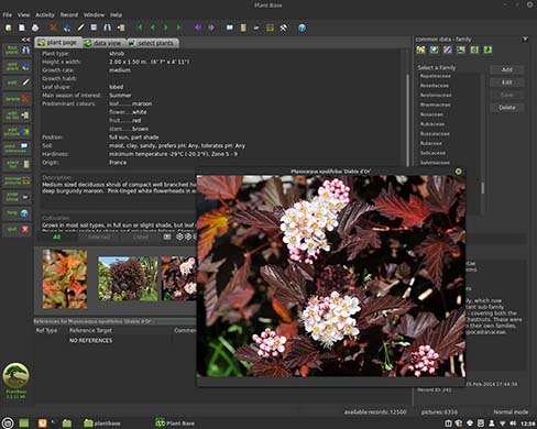 Plant Base using Linux Mint 20 Cinnamon with dark theme