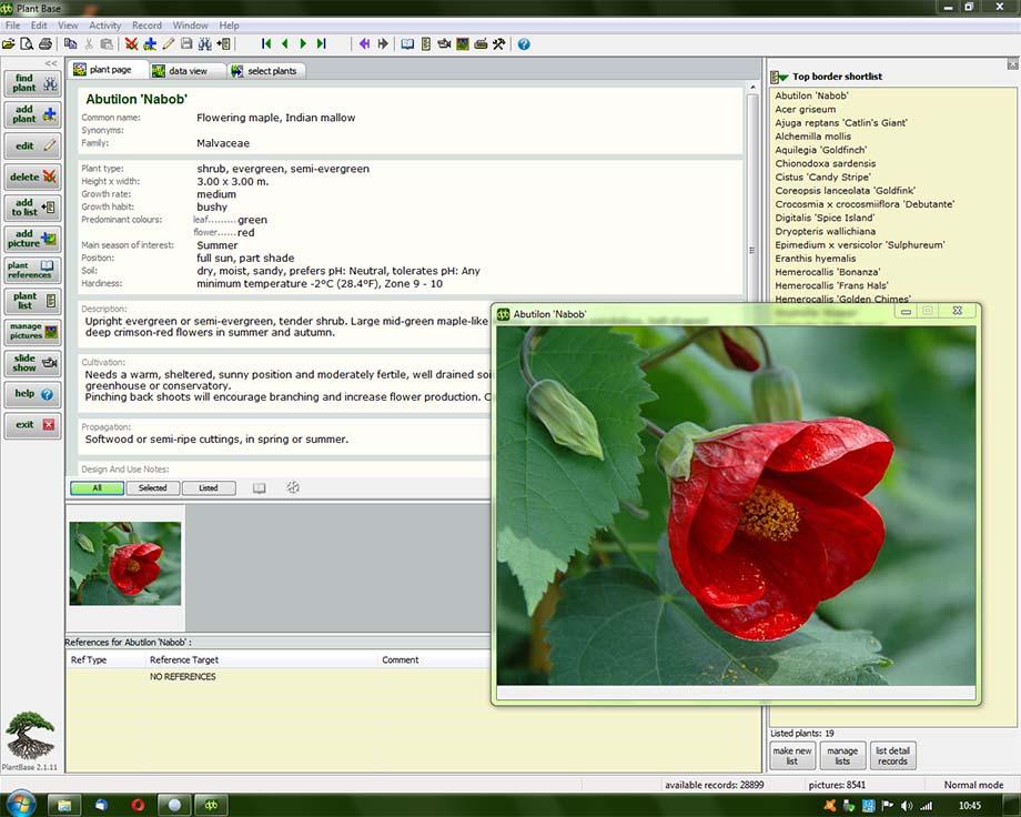 Deeproot Plant Base X64 screenshot