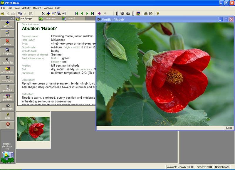 Plant Base full screenshot